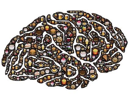 brain-954821_1920